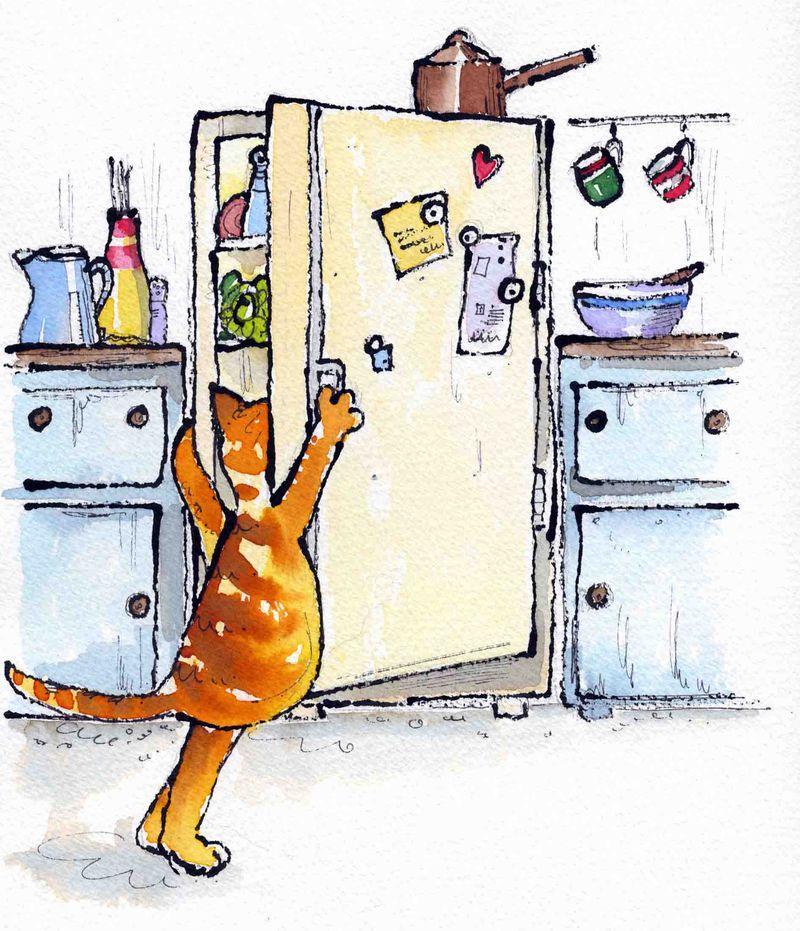Sam at the fridgel