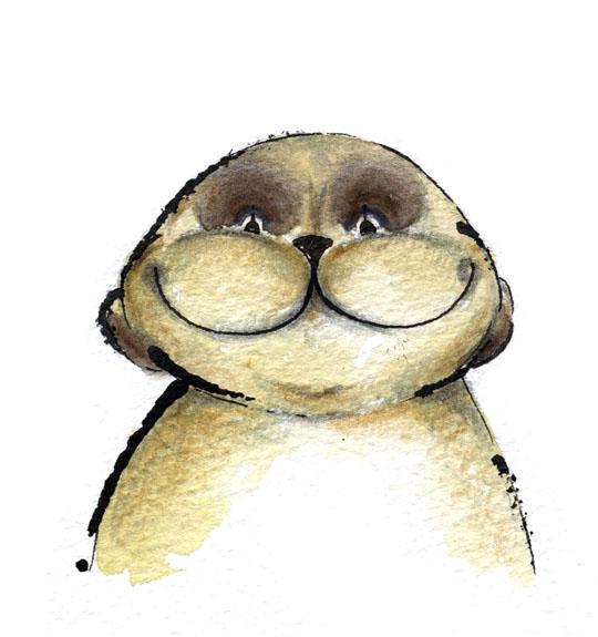 Jill Latter. meerkat smiles