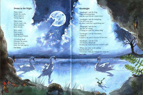 Poetry,-Swans-in-the-Night-