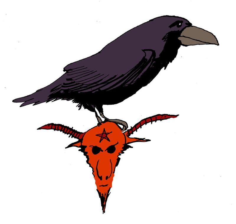 RSPB Raven